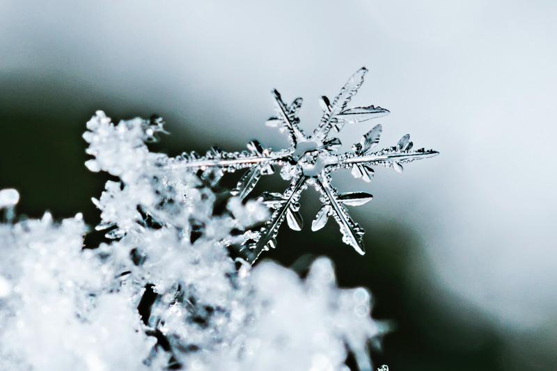 Winter afhaalmenu